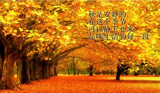 赞美秋天的句子