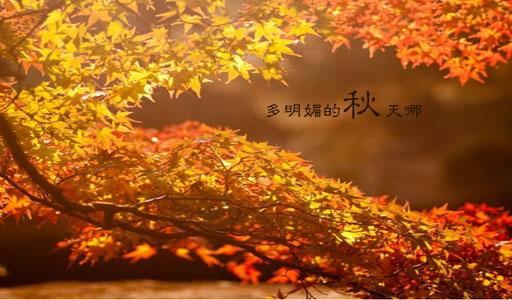 描寫秋天的經典句子