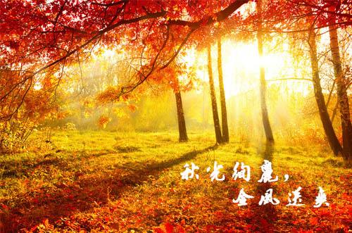 描写秋天的好词好句