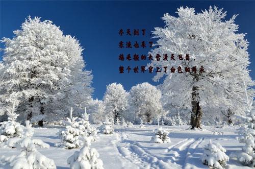描写冬天的佳句