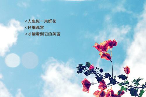 作文有高优美语句因为有志高中中篮球队哪些南京图片