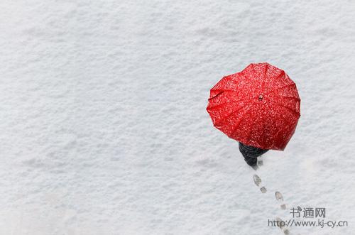 形容雪的句子 白蒙蒙的大雪之中