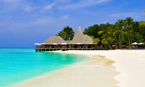 美丽的沙滩作文|美丽的沙滩作文450字