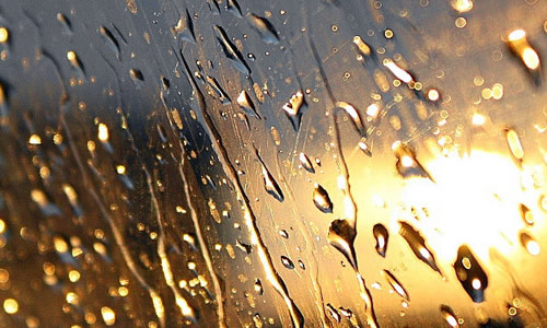 那天雨一直下作文700字