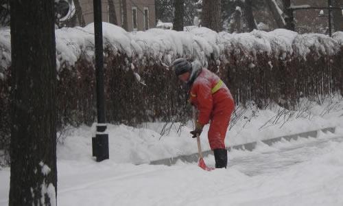 清洁工扫雪的作文图片