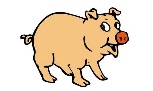 可爱小猪午休图片