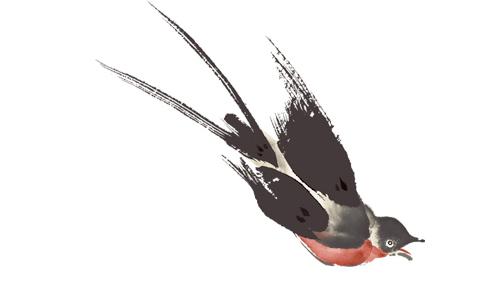 梦见抓一只燕子