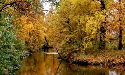 秋天的小河作文300字