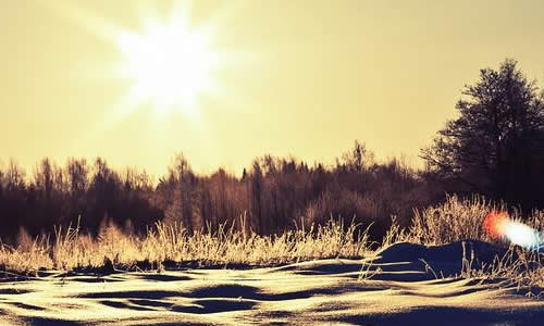冬天的阳光龙虎娱乐app800字