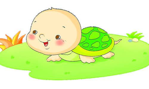 可爱的小乌龟作文200字8篇