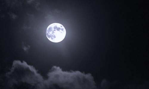 十五的月亮作文300字