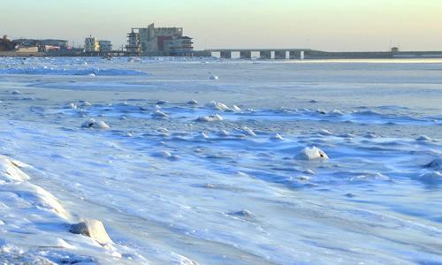 写冬天的大海的龙虎娱乐app