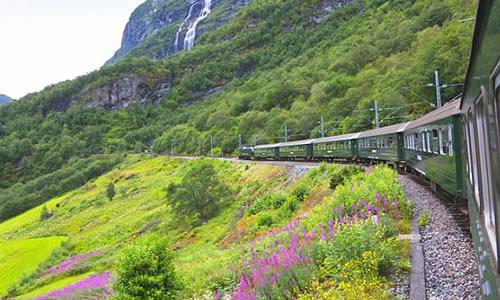 火车窗外的景色作文