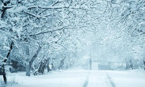 走过冬天为题的龙虎娱乐app