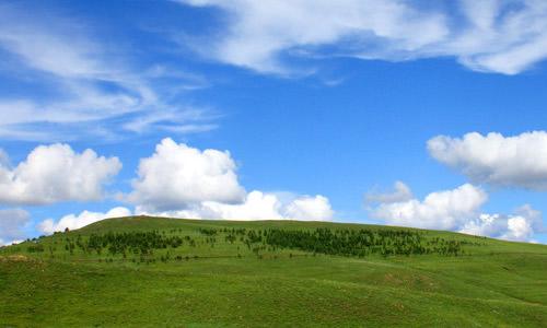 600字龙虎娱乐app我的故乡草原