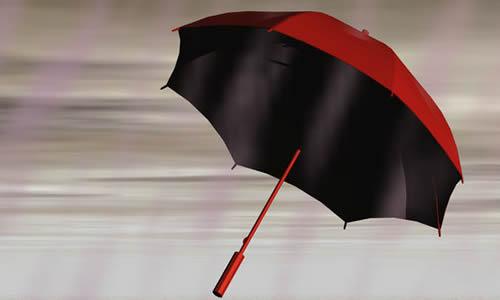 未来的雨伞作文200字