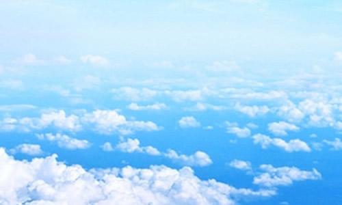 我是一朵云作文500字