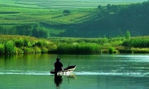 夏天钓鱼作文300字