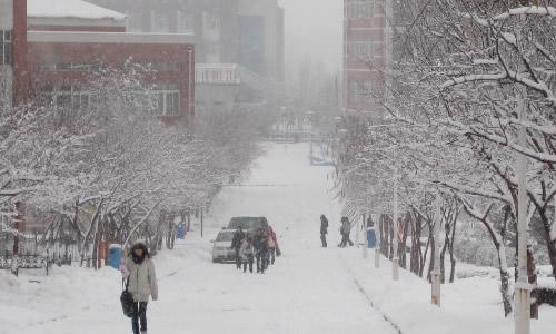 校园的冬天龙虎娱乐app450字