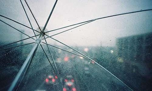 雨中风景_300字
