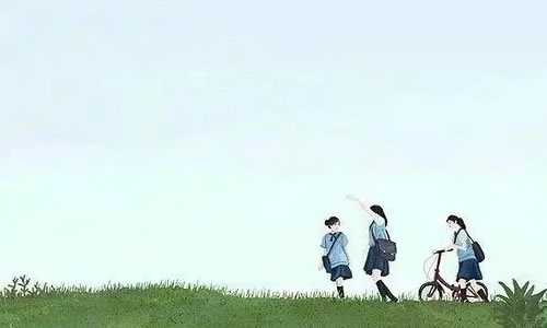 校�@友情高中作文