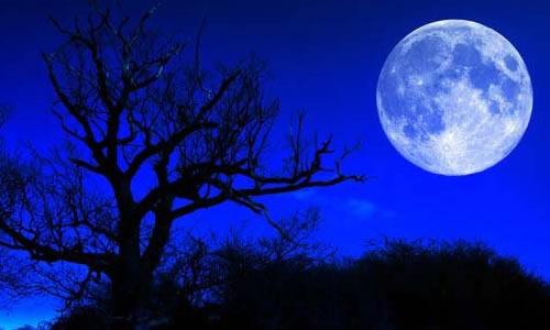 找月亮图片素材