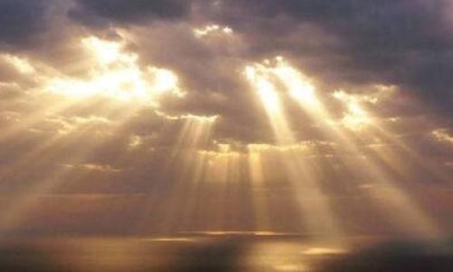 阳光随之撒满我们灰暗冷漠的视网膜
