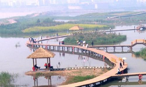 黄河湿地公园作文