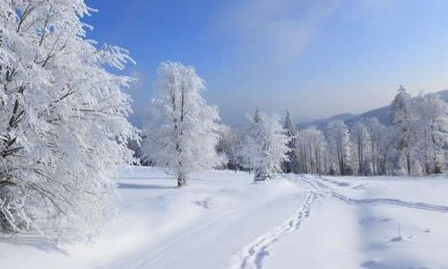 苏教版九年级下册龙虎娱乐国际城第五单元龙虎娱乐app:雪景