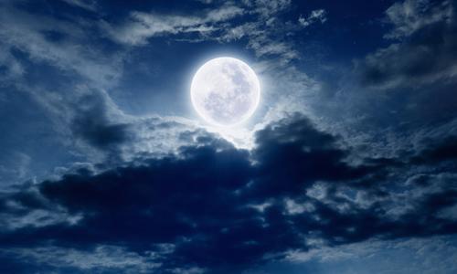月是故乡明为题龙虎娱乐app