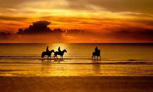 > 在金色的沙滩上作文   1金色的沙滩 一天,我来到了一望无际的海边无