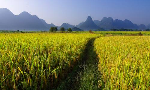桂林的如诗如画,风景秀丽