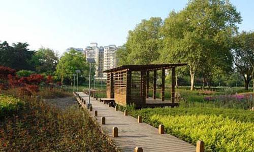 杭州白塔公园 秋天