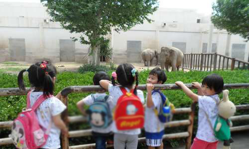参观动物园作文400字