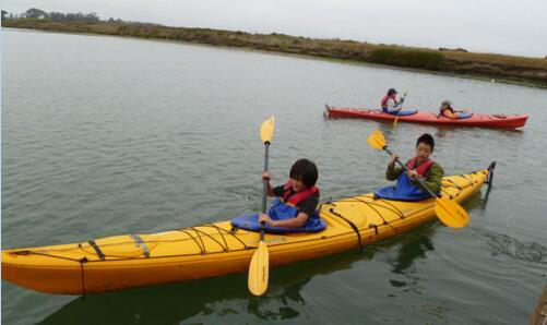 划皮划艇体型什么柔道适合作文图片