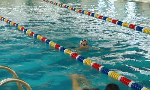 奥运会游泳比赛作文图片 40793 500x300