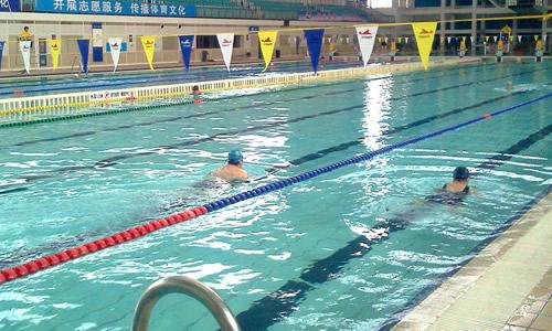 动物运动会作文游泳