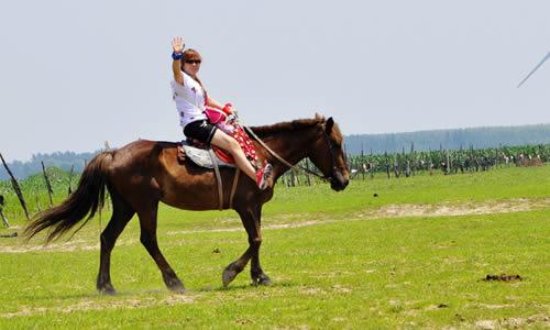 坝上草原骑马作文