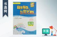 六年级上册数学同步导学与优化训练答案人教版