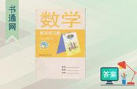 青岛版三年级下册数学配套练习册答案