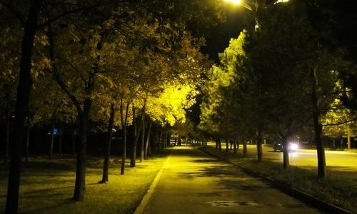 描写秋天夜景的作文500字