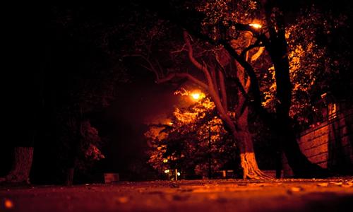 描写秋天夜景的作文400字