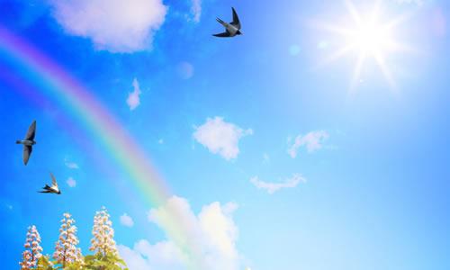 小鸟们又在云朵里玩捉迷藏,人们又出来呼吸新鲜空气湛蓝深远的天空中