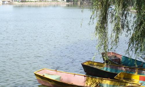 公园木桥湖风景壁纸