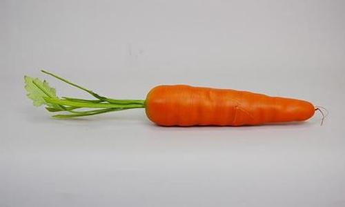 又是胡萝卜,但这次我并没有生气.