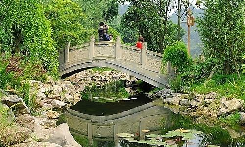家乡的小石桥作文