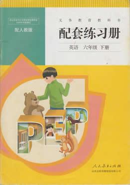 六年级下册英语配套练习册答案人教版