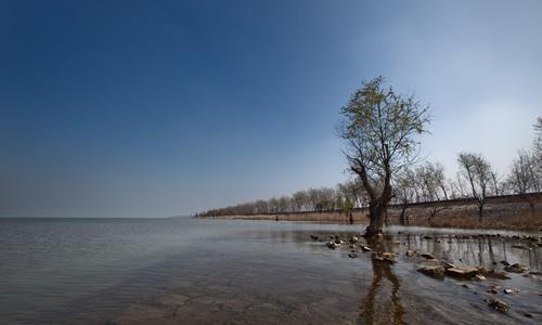 描写洪泽湖的作文1000字