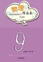 人教版九年级下册物理作业本答案江西省