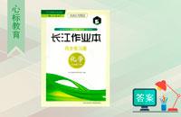 九年级下册化学长江作业本答案人教版